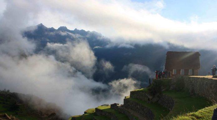 Peru 2017 newsletter