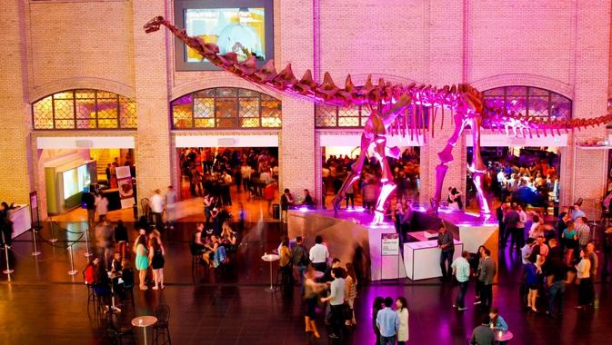 Party v muzeu